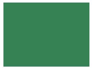 Angel Greens - Islington Vegbag CIC