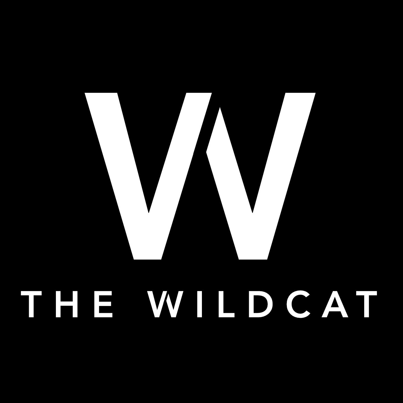 WILDCAT CAFE LTD