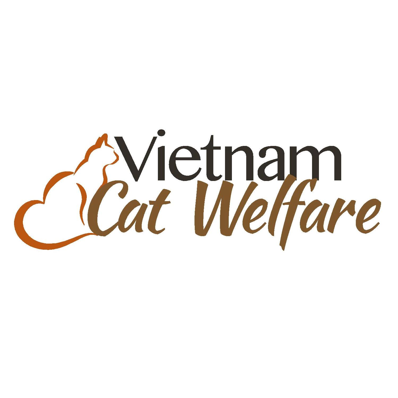Vietnam Cat Welfare