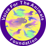 Voice for the Animals Foundation