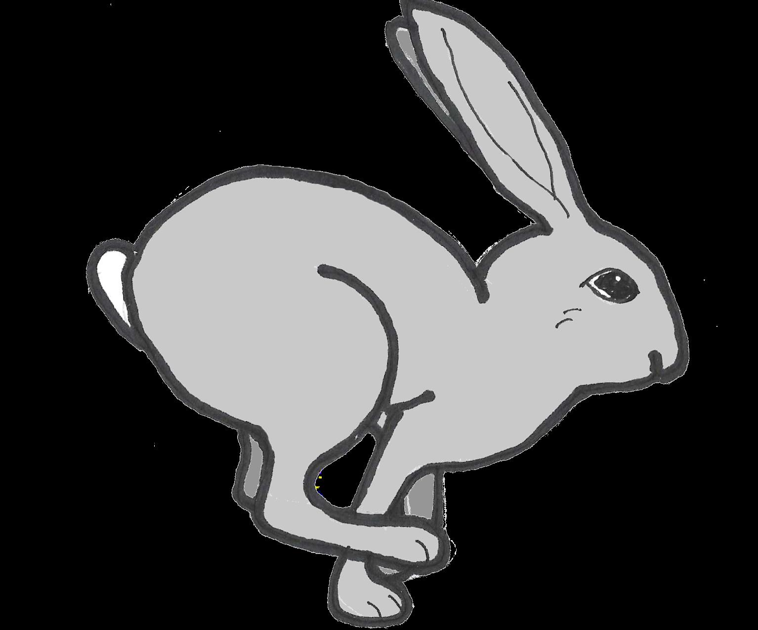 Peak Hare
